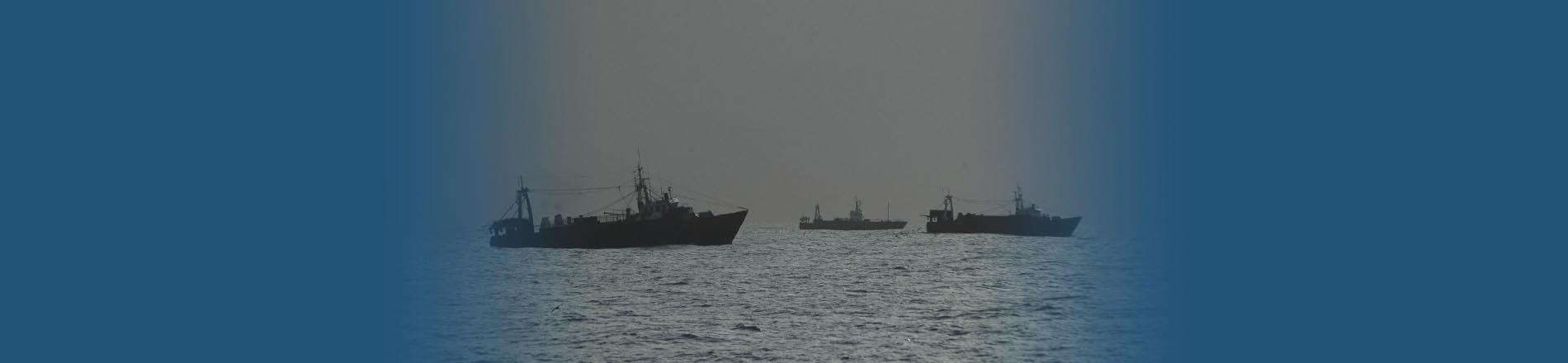 Captura de langostino en aguas de jurisdicción nacional