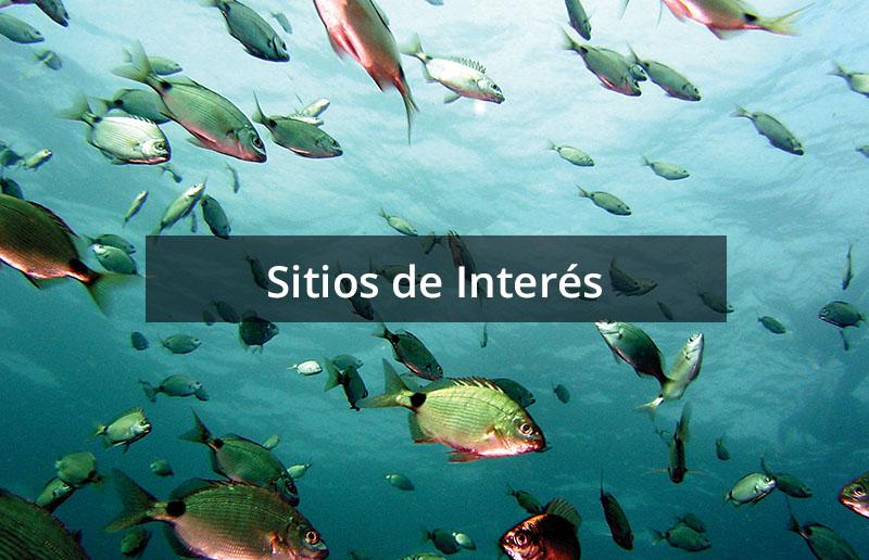 Sitios de Interés